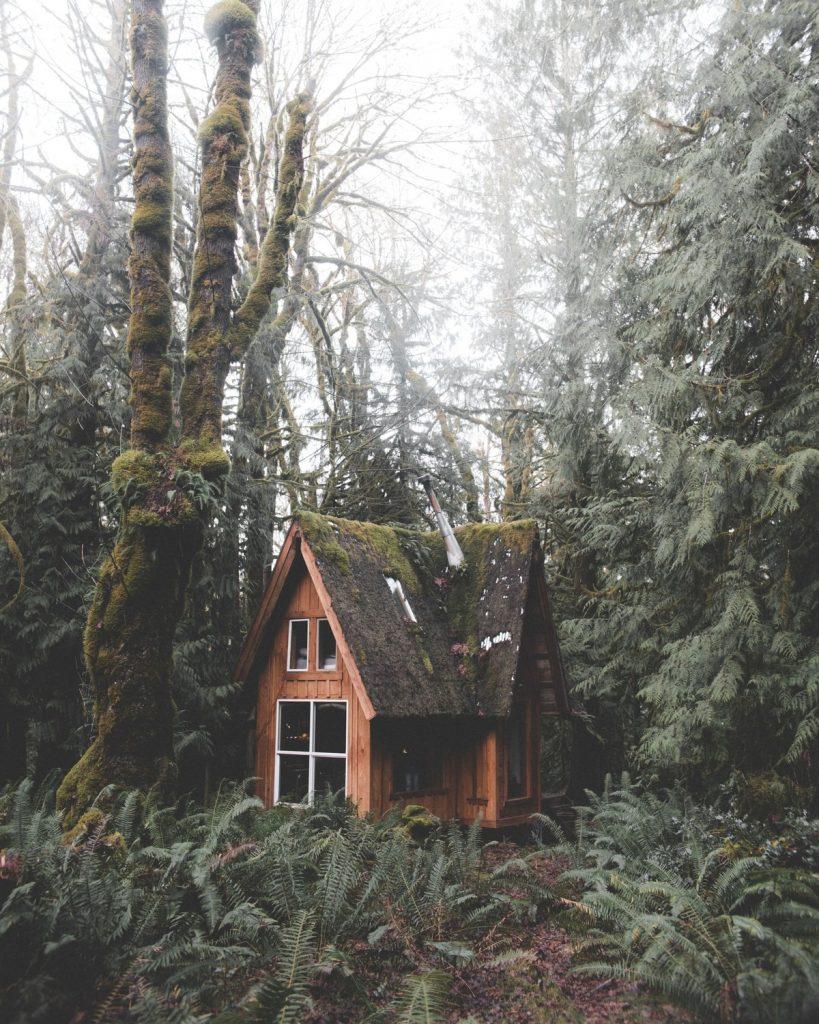 cabane de jardin en bois avec deux étages
