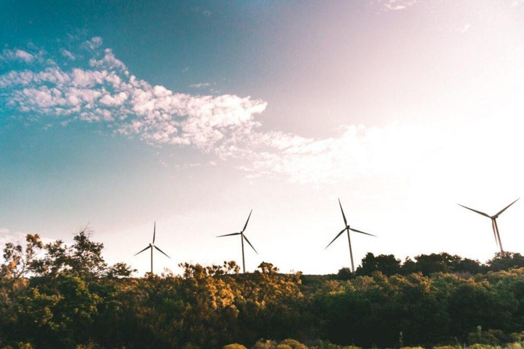 chamsp d'éoliennes