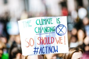 pancarte manifestation environnement