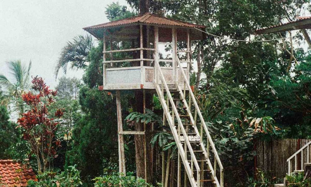 cabane-arbre-construction