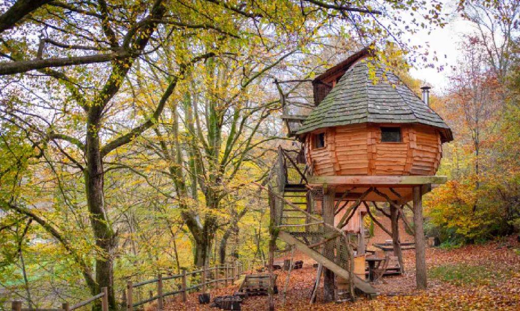 construction-cabane-arbre-choix